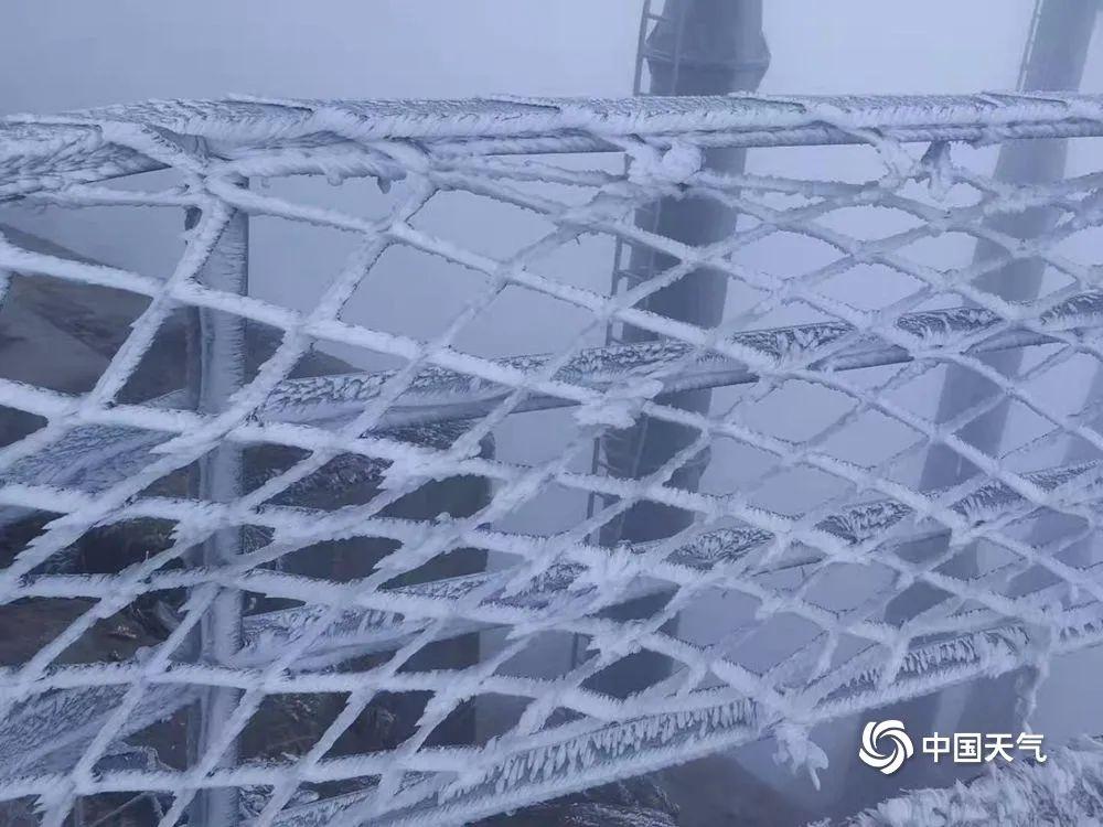 广东下雪了?真美!今年最冷已到,接下来东莞天气是……插图8