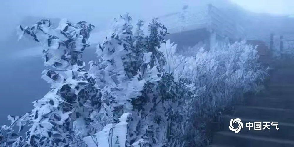 广东下雪了?真美!今年最冷已到,接下来东莞天气是……插图10