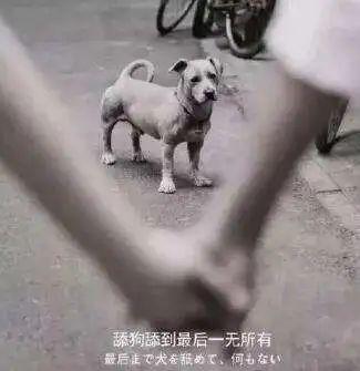 """东莞一女子谈了场""""甜恋"""",转账106次,结果46万元没了!插图"""