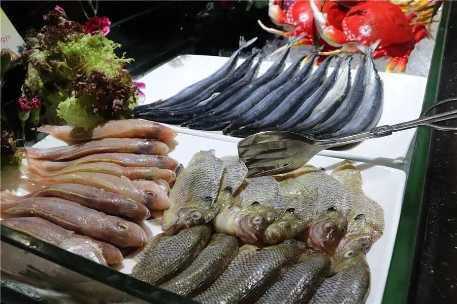 1招回本!东莞尼罗河国际酒店自助餐来啦,100+菜品海鲜,烤肉,刺身随你吃!!!插图22