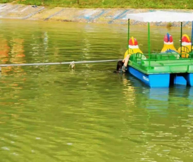 突发!东莞一公园有人落水,情况紧急。。。