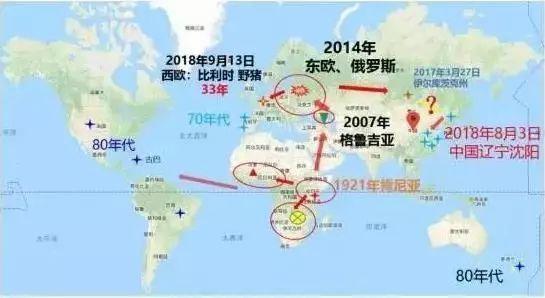 天呐!东莞人经常吃的三全灌汤水饺被曝检出非洲猪瘟病毒?插图16