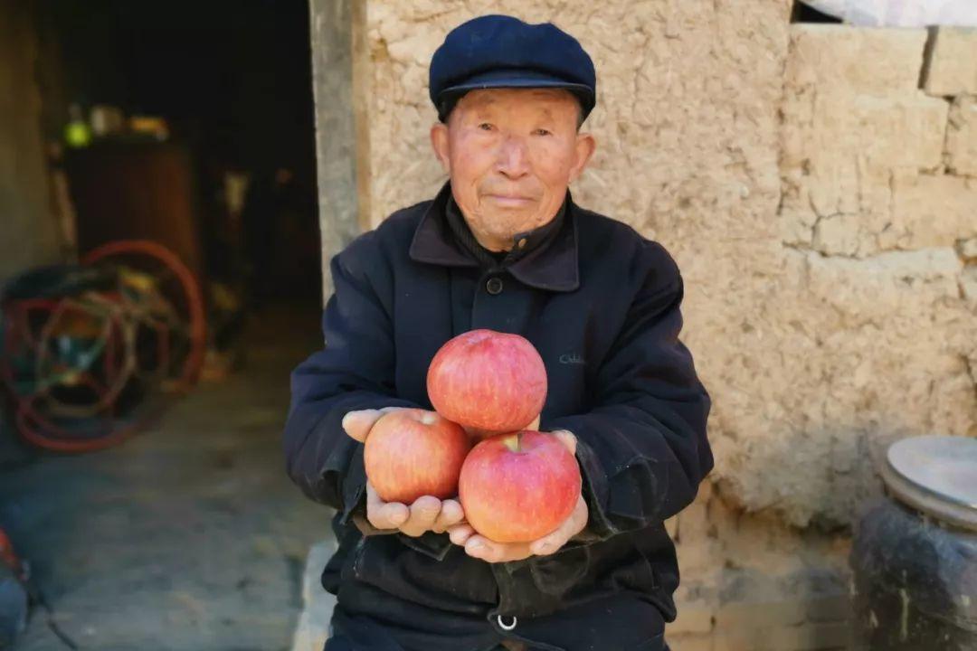 年关将近,紧急求助!陕西300万斤红富士苹果急盼销路,10斤仅29.9元,请大家帮忙转发助力,帮助乡亲们度过年关!插图60