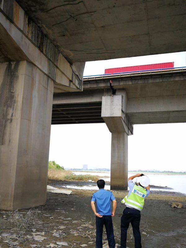 网传东莞一大桥出现开裂现象?官方通报来了!插图16