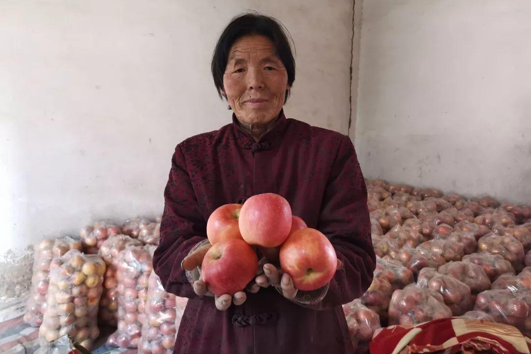 年关将近,紧急求助!陕西300万斤红富士苹果急盼销路,10斤仅29.9元,请大家帮忙转发助力,帮助乡亲们度过年关!插图40