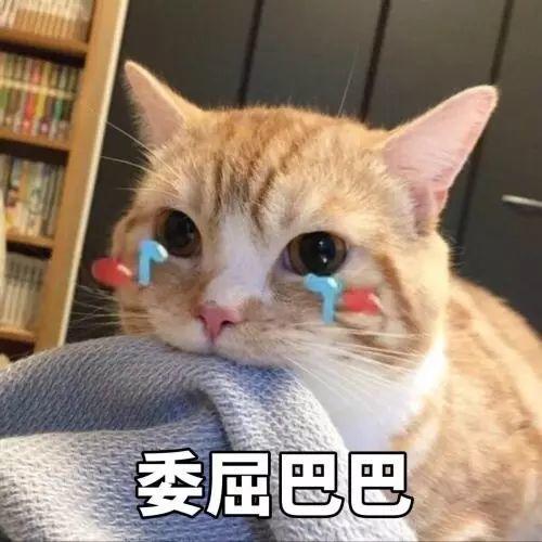 """台风""""玲玲""""已生成!东莞开启""""倒水""""模式…插图8"""