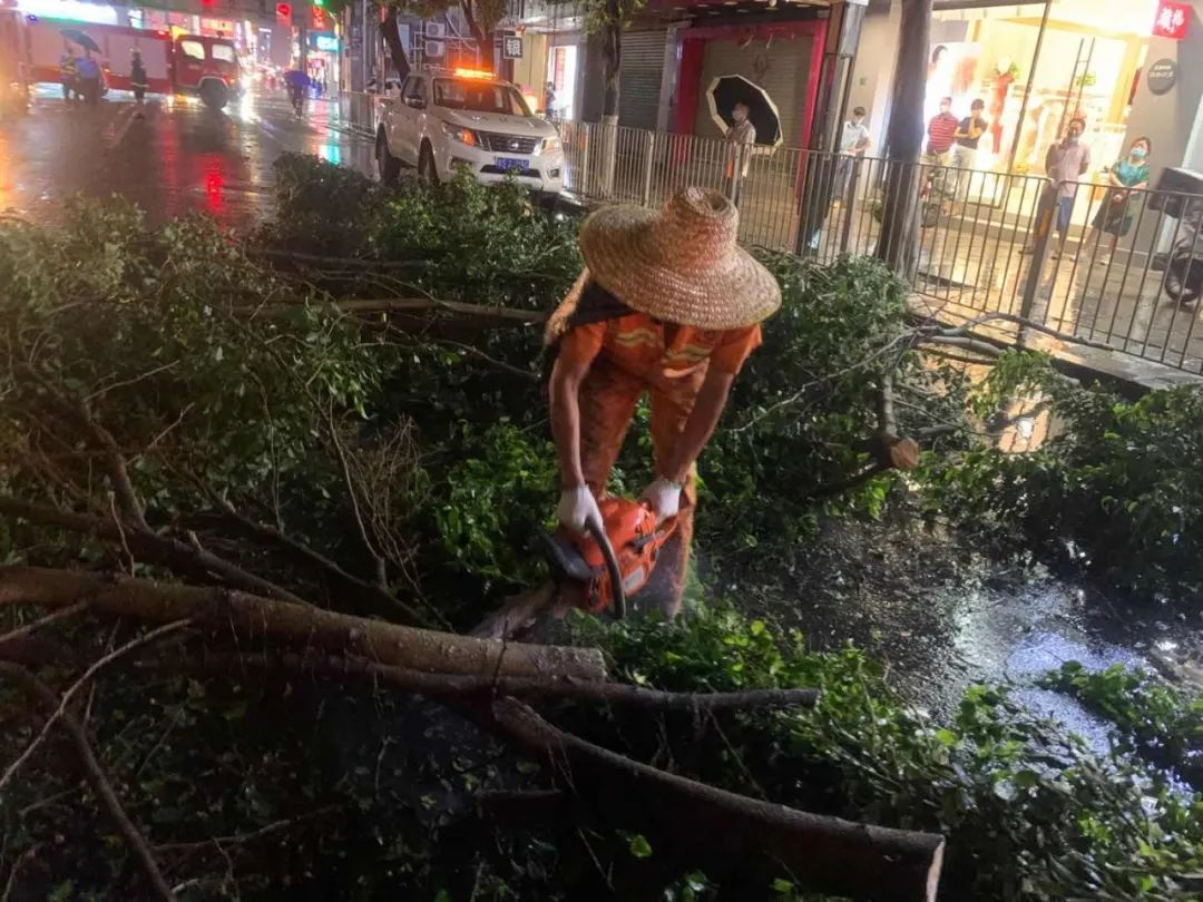 突发! 东莞昨晚狂风雷暴雨的4小时, 有人被大树压着, 有人被困, 有人……插图48