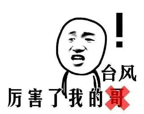 """台风年底""""冲业绩""""! 东莞将迎来13级大风+降雨+冷空气三重暴击! 更让人抓狂的是…….插图22"""