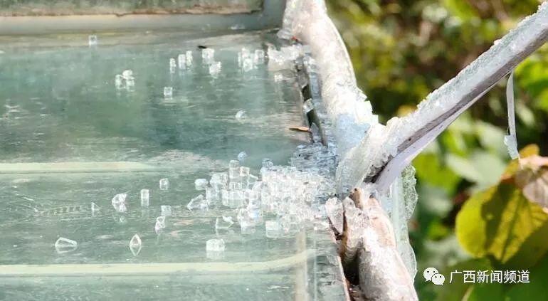 网红玻璃滑道出事!护栏被撞破1死6伤,游客回忆惊魂瞬间插图8