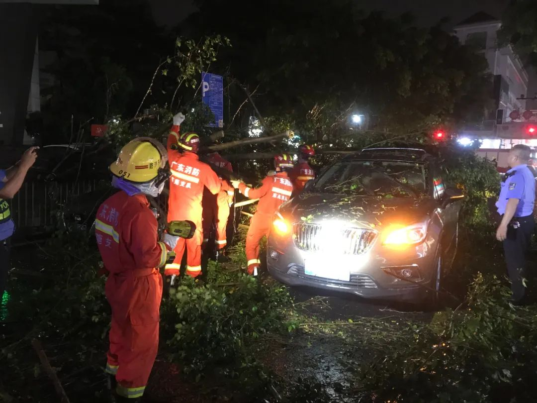 突发! 东莞昨晚狂风雷暴雨的4小时, 有人被大树压着, 有人被困, 有人……插图10