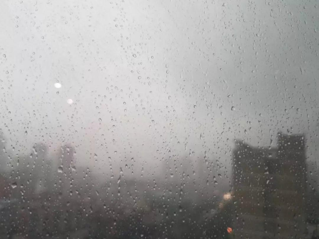 水浸街又来了!雷雨大风+暴雨预警生效!地质灾害预警三级!插图8