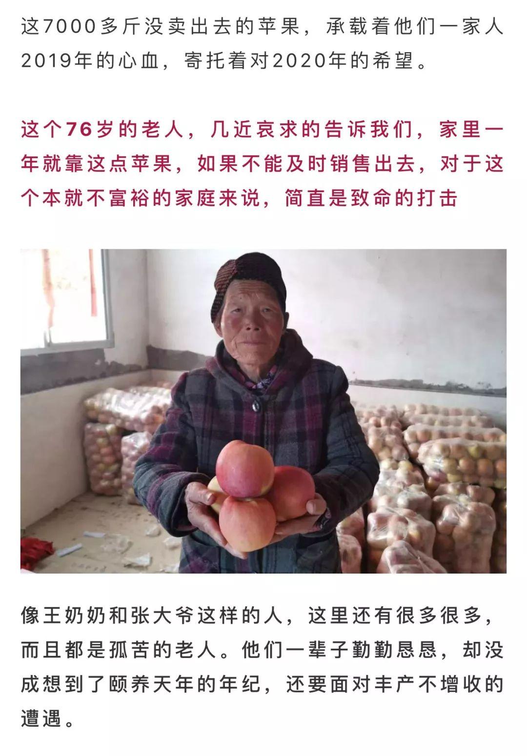 年关将近,紧急求助!陕西300万斤红富士苹果急盼销路,10斤仅29.9元,请大家帮忙转发助力,帮助乡亲们度过年关!插图36
