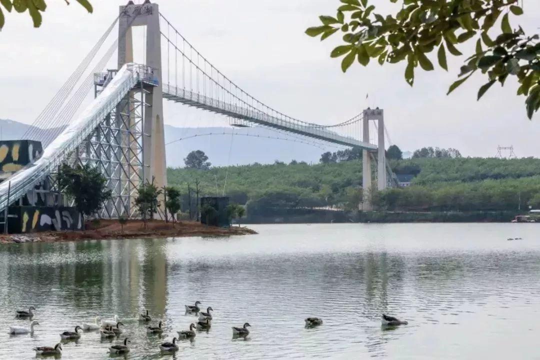 步步惊心!广东玻璃桥都在这里,你敢试吗?插图8
