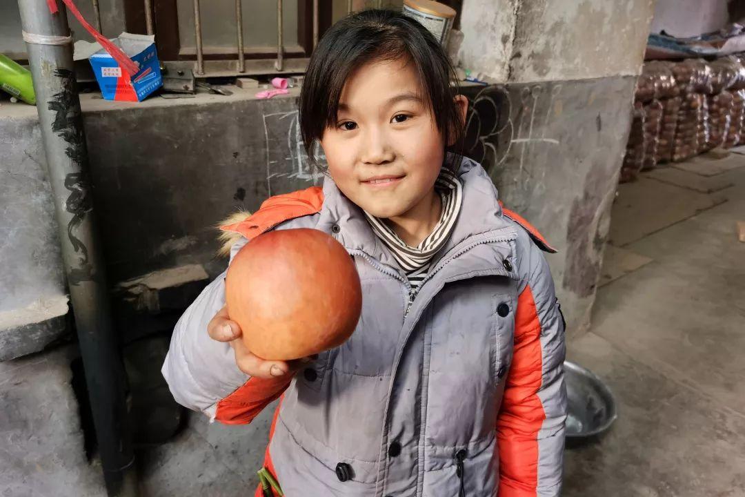 年关将近,紧急求助!陕西300万斤红富士苹果急盼销路,10斤仅29.9元,请大家帮忙转发助力,帮助乡亲们度过年关!插图22