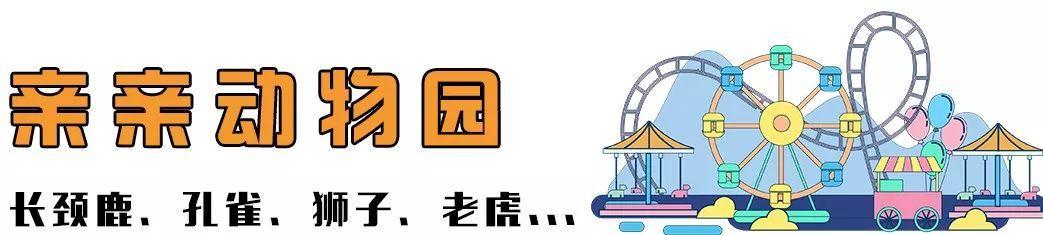 放大招啦!99元抢隐贤山庄家庭套票,2大2小畅玩六大主题!3D玻璃桥+动物园+3D花海...