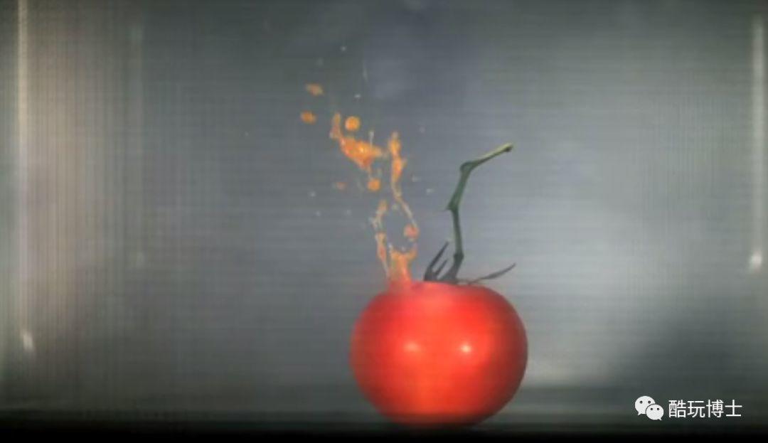 """""""我把两颗葡萄放进了微波炉,结果把房子炸没了""""插图38"""