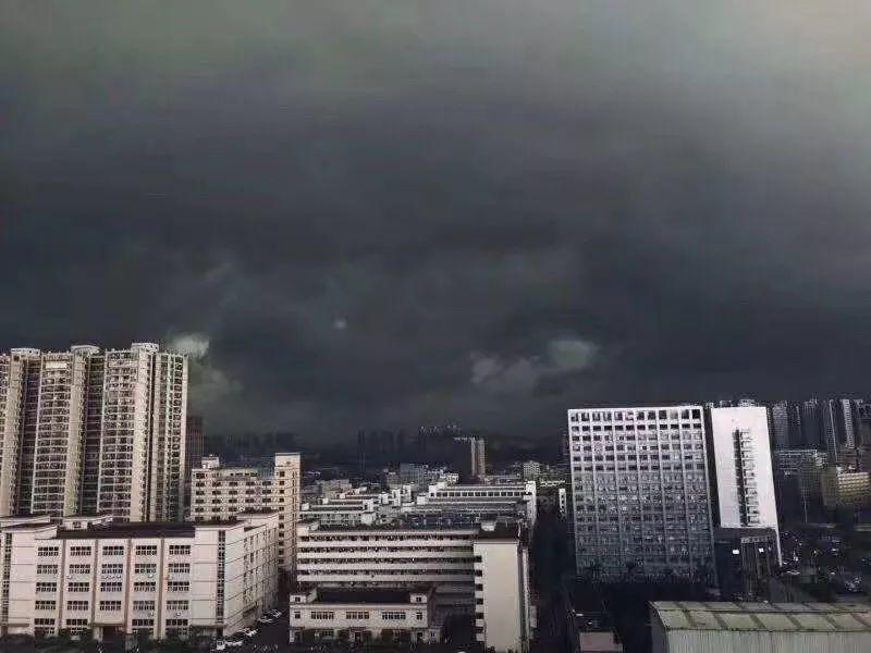 水浸街又来了!雷雨大风+暴雨预警生效!地质灾害预警三级!插图4