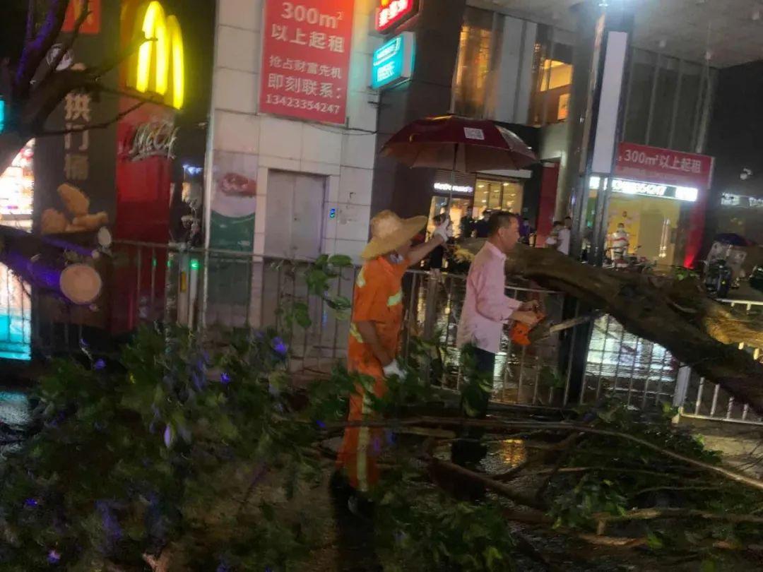 突发! 东莞昨晚狂风雷暴雨的4小时, 有人被大树压着, 有人被困, 有人……插图52