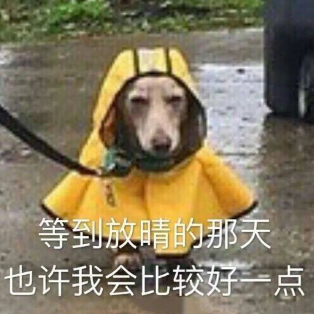 一天3次雷雨大风黄色预警!东莞人的周末怎么过?插图