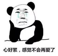 """刚刚!东莞台风预警生效!""""白鹿""""将正面袭击广东!插图20"""