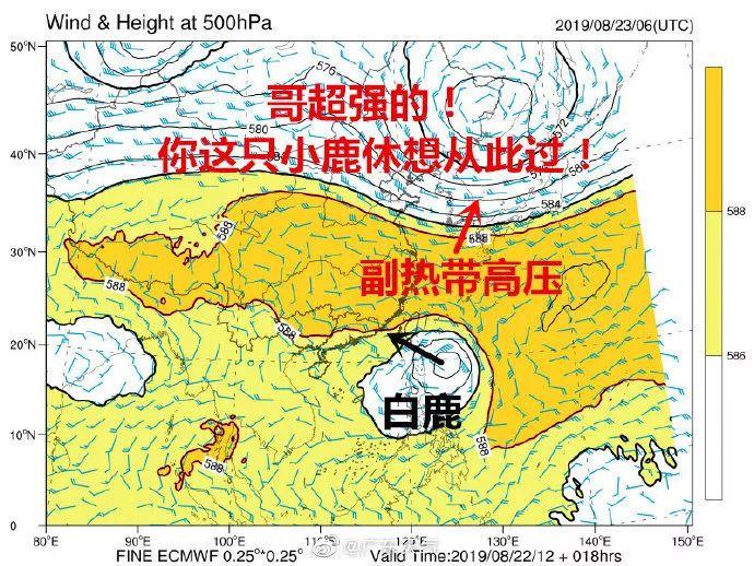 """刚刚!东莞台风预警生效!""""白鹿""""将正面袭击广东!插图8"""