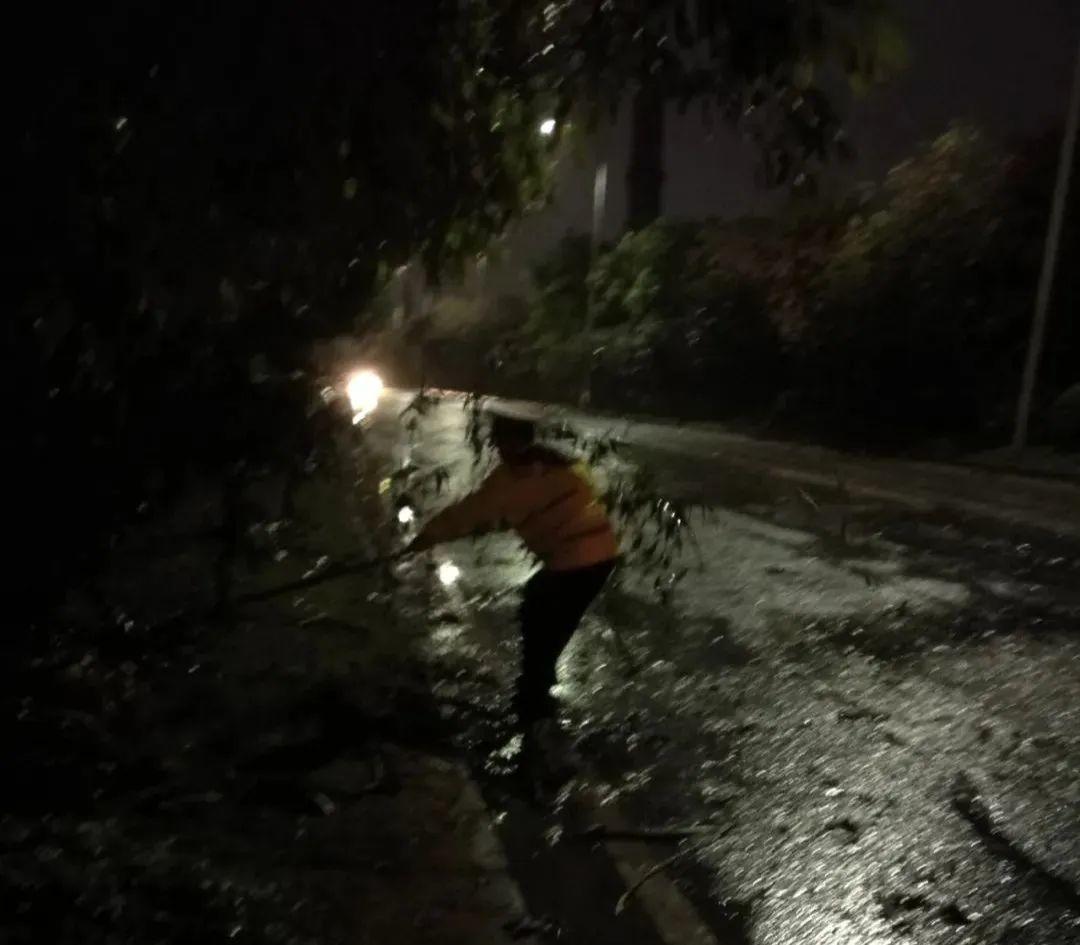 突发! 东莞昨晚狂风雷暴雨的4小时, 有人被大树压着, 有人被困, 有人……插图60