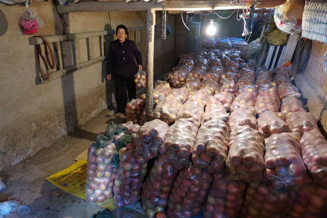 年关将近,紧急求助!陕西300万斤红富士苹果急盼销路,10斤仅29.9元,请大家帮忙转发助力,帮助乡亲们度过年关!插图54