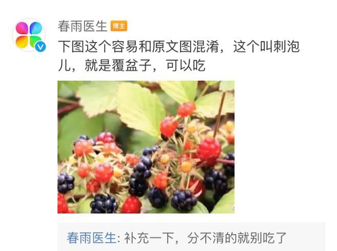 注意! 吃了这种果子, 4个孩子在路边呕吐, 一人昏迷! 东莞特别多….插图30