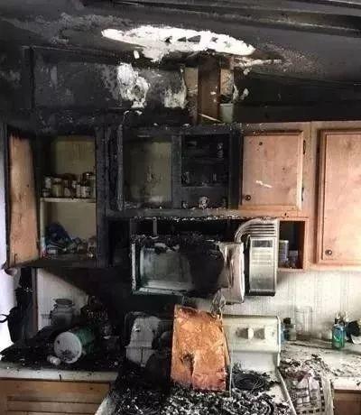 """""""我把两颗葡萄放进了微波炉,结果把房子炸没了""""插图4"""