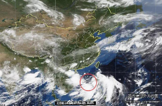 注意!台风胚胎预计今日生成,东莞多地将会有暴雨+8级大风!插图8