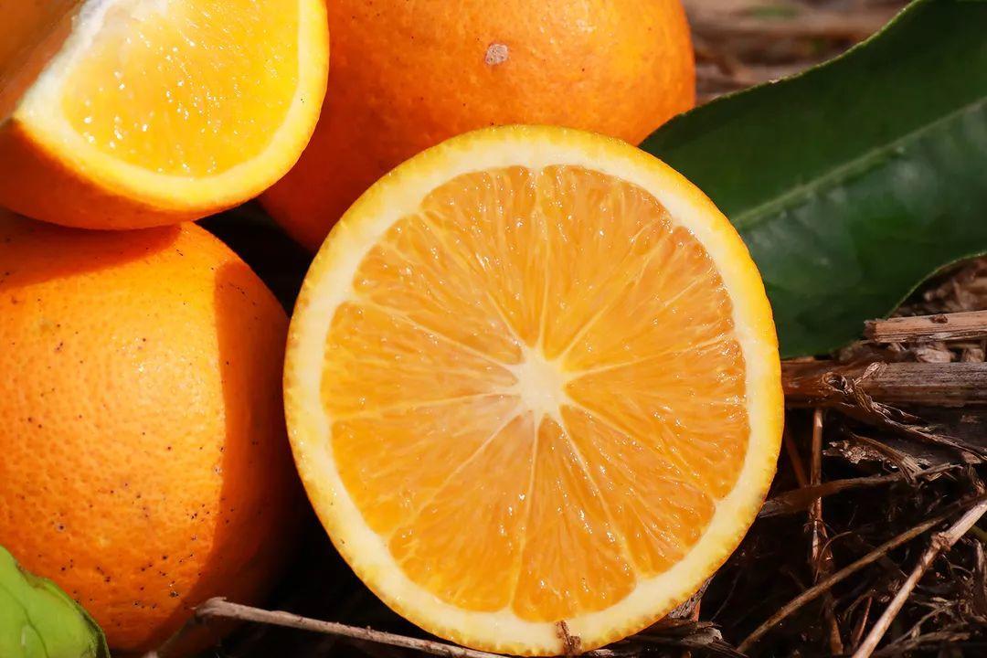 助力麻阳冰糖橙走出大山,留守老人一生良心种植,5斤仅19.9元,甜润爽口,生态健康!插图18