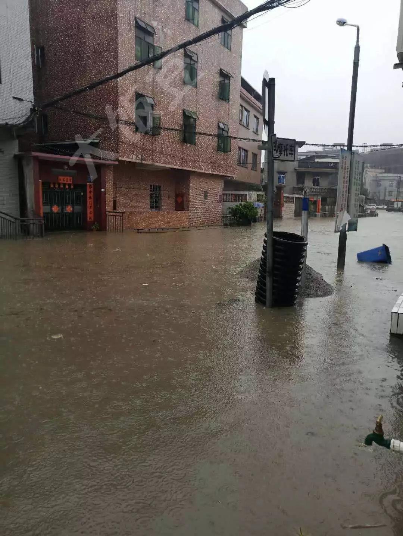 水浸街又来了!雷雨大风+暴雨预警生效!地质灾害预警三级!插图18