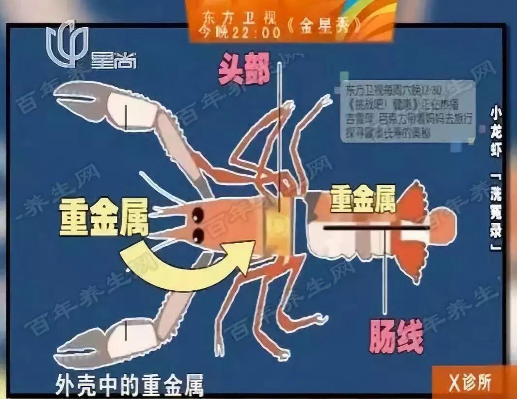 小龙虾的致命真相:全世界都不敢吃,中国人却还被蒙在鼓里!插图40