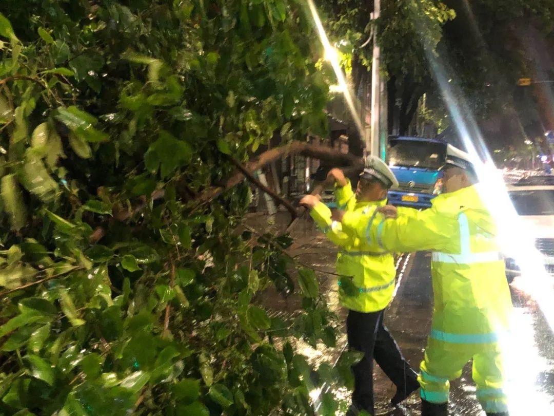 突发! 东莞昨晚狂风雷暴雨的4小时, 有人被大树压着, 有人被困, 有人……插图62