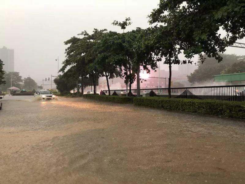 水浸街又来了!雷雨大风+暴雨预警生效!地质灾害预警三级!插图48