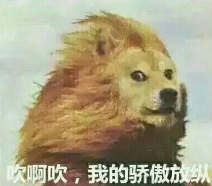 好!大!的!风!冷空气正在深入,你的发型还好吗?插图8