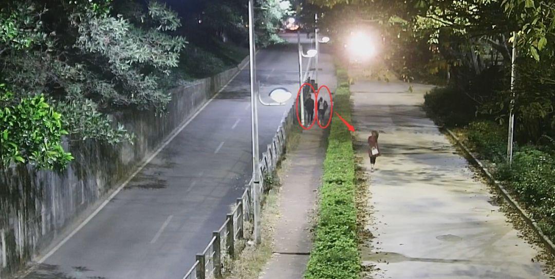 东莞一女子深夜被2名男子尾随!公共视频拍下惊险一幕…插图