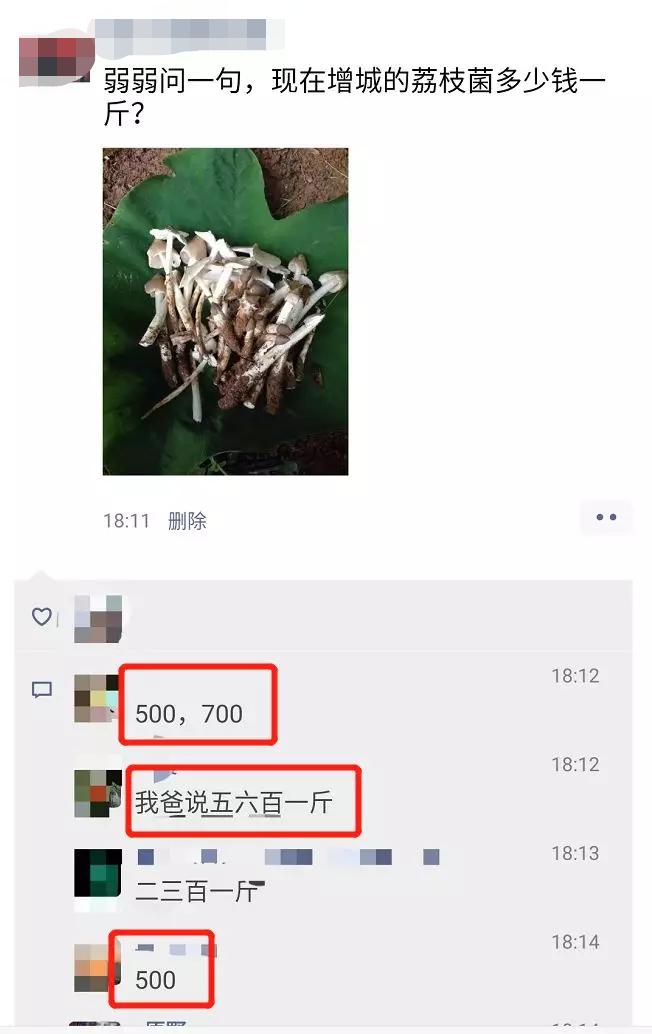 卖成700元/斤!最近很多东莞人连夜去找它!你吃过没?插图18