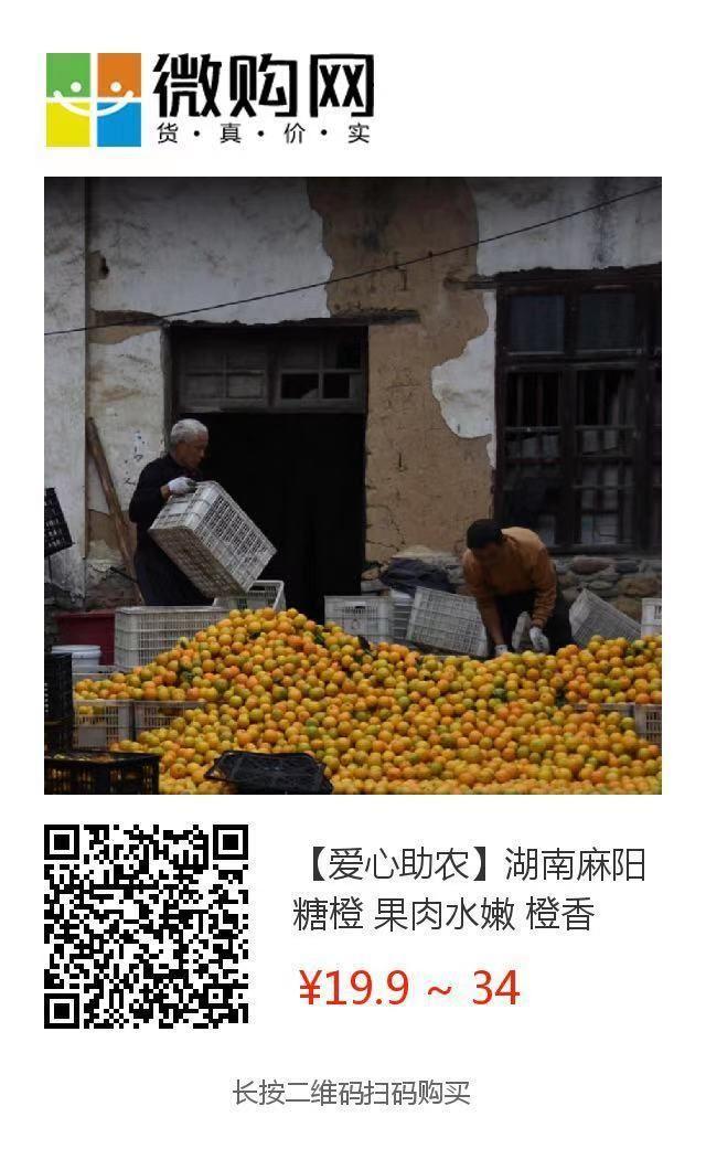 助力麻阳冰糖橙走出大山,留守老人一生良心种植,5斤仅19.9元,甜润爽口,生态健康!插图48