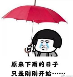 一天3次雷雨大风黄色预警!东莞人的周末怎么过?插图12