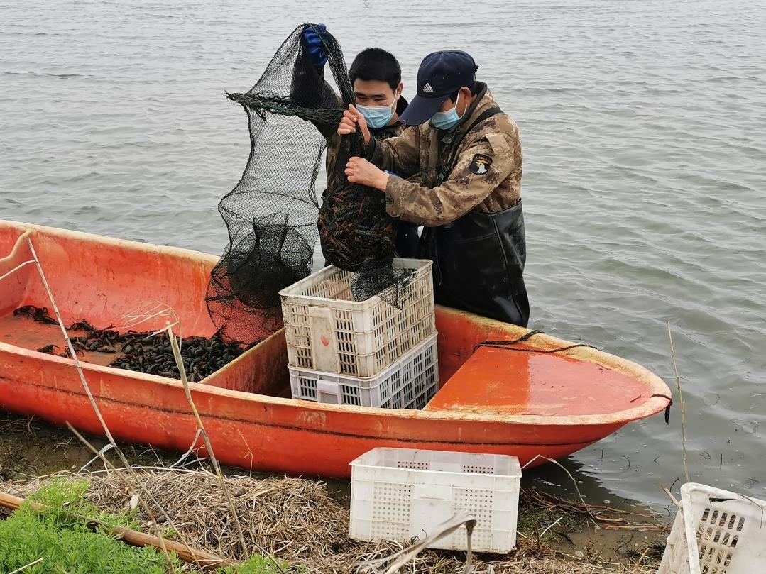 东莞人最爱的小龙虾来了!这些地方送到家!