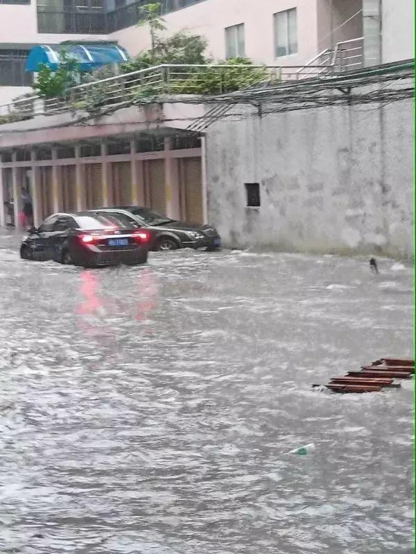 水浸街又来了!雷雨大风+暴雨预警生效!地质灾害预警三级!插图30