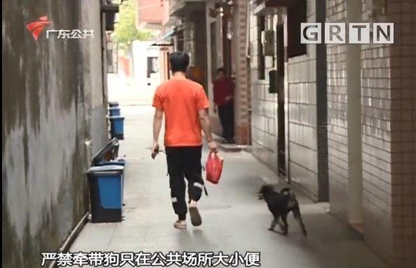 东莞一居委会发通知杀狗,宠物也有感染新冠肺炎风险?官方回应来了!插图8
