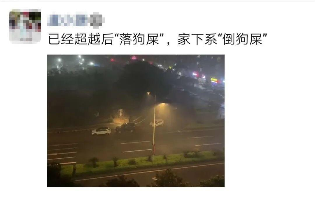 突发! 东莞昨晚狂风雷暴雨的4小时, 有人被大树压着, 有人被困, 有人……插图40