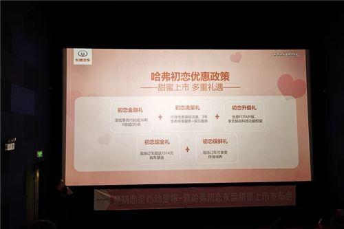 哈弗初恋东莞甜蜜上市 仅7.89万元起售插图2